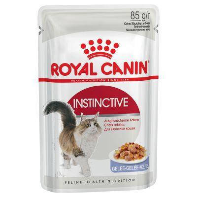 thuc-an-cho-meo-royal-canin-instinctive-jelly